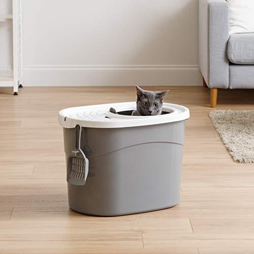 Buy odorless cat litter box
