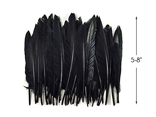 The Craft Halloween Costumes - 1 Pack - Dyed Black Duck