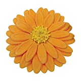 PME Plunger Cutters, Veined Sunflower Daisy and
