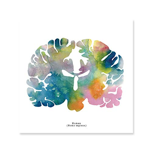 - J. Sayuri Human Brain Art Print - 12