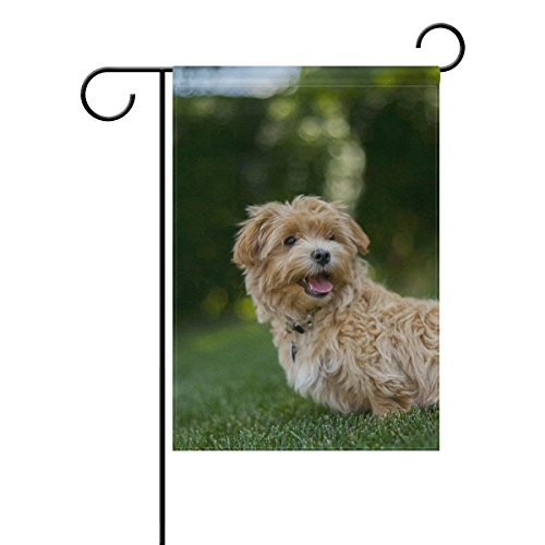 YusuiG Grass Cockapoo Dog Outdoor Garden Flag Banner 12.5 X