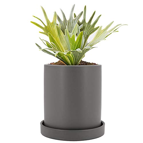Gray Ceramic - GeLive 4.5 Inch Gray Ceramic Succulent Planter, Cylinder Plant Flower Pot with Drainage Hole and Tray Saucer, Nordic Minimalism, Elegant Modern Home Decor (Medium, Matte Gray)