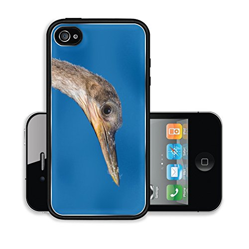 iPhone 4 4S Case 05 20 15 1466 jpg Image 17899639971