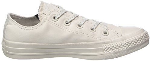 Converse Pale Pale Beige Ox Putty Adulte Putty 036 Baskets Putty Mixte CTAS Pale rHvfwrq