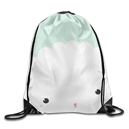3de118bd8d34 Classic Raccoon Drawstring Bags Gym Sports Dance Backpack Portable Daypack