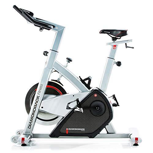 best home gym bikes