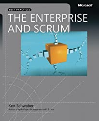 The Enterprise and Scrum (Developer Best Practices)