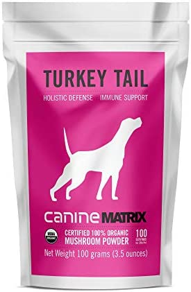 Canine Matrix Organic Mushroom Supplement for Dogs, Turkey Tail, 100 gm, Model Number 857727004886