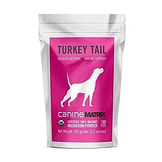 Canine Matrix Organic Mushroom Supplement for Dogs, Turkey Tail, 100 Gram