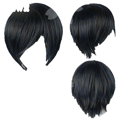 Persona 3 Minato Arisato Gekkoukan Cosplay Costume Wig]()