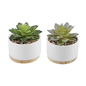 Flora Bunda Artificial Plant Artificial Succulent in 4 Inch Round Ceramic Planter with Wood Base Mid Century Pot,White, Set of 2 4
