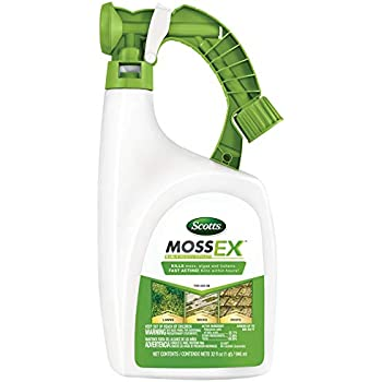 Amazon Com Lilly Miller Moss Out For Lawns Ready To