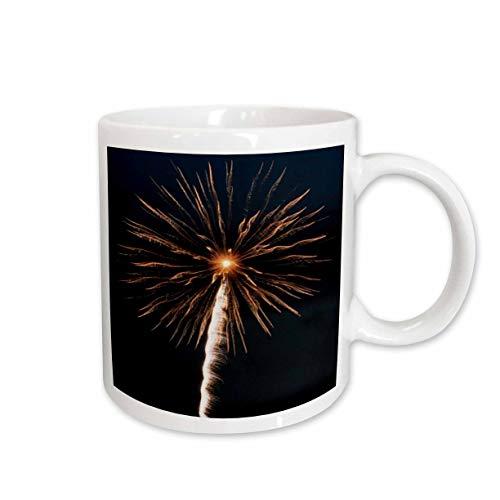 Fireworks Mug - 3dRose 292190_1 Mug 11oz White