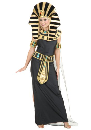 Nefertiti Costume Fancy Dress (Egyptian Nefertiti Adult Costume - Medium)