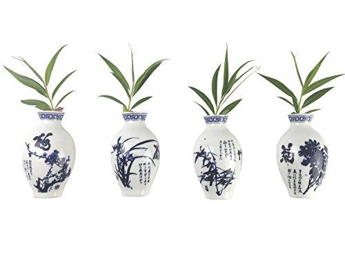 Fridge Magnets, Grow Plants in Oriental Ceramics Vase Refrigerator Magnets,Set of 4, Door Magnets, Wall Magnets