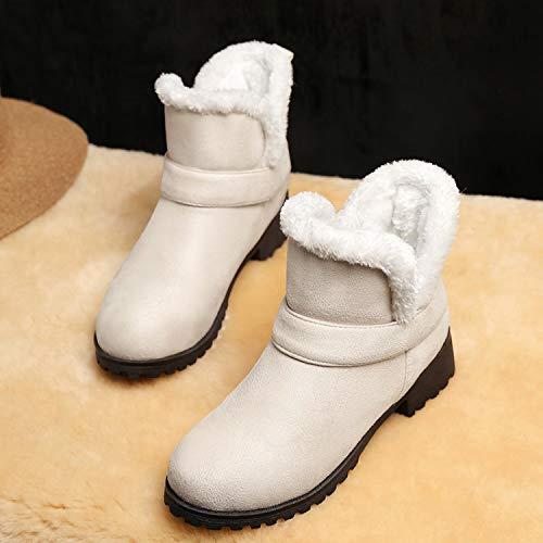 Shoe Martin Bajo Botas Tamaño Gran Phy Nieve Planas Felpa De Con Botines Beige Tacón pIw0ZnxdqH