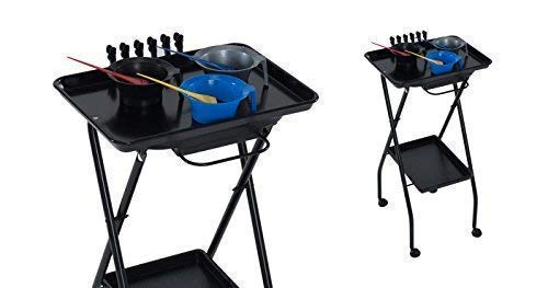 KAYLINE Designed Model FT59-A by AKRA Salon Kayline Service Tray w/BLACK Trays +FREE YS Park L-Clips ($15 value)