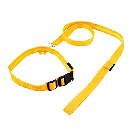 Amazon.com : eDealMax luz LED Hebilla de liberación Animal doméstico de la Correa Ajustable Cuello de la Correa Set, Amarillo : Pet Supplies