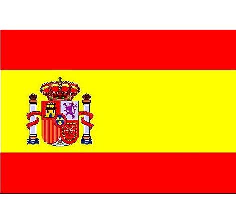 Pegatina vinilo impreso para coche, pared, puerta, nevera, carpeta, etc. Bandera de espana: Amazon.es: Coche y moto