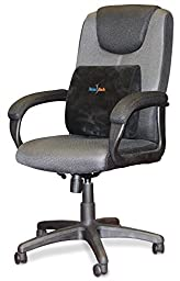 RelaxBack Lumbar Support Cushion for Low Back Pain, Perfect for Car, Wheelchair, Office Chair, Airplane, and Patio Furniture, Includes FREE Back Pain Relief E-Book, Compare to Mueller & Duro-Med