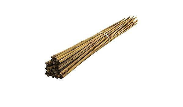 Suregreen 2.1 M bambú (50 Unidades) jardín Bastones, 7 m, 14 - 16 ...