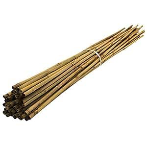 Suregreen 500PK X 0,9m (10–12mm) bambú jardín bastones, 3m, 10–12mm Dia. Planta apoyo bastones