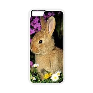 [Funny Series] IPhone 6 Plus Case Animal 110, Case Iphone 6 Plus Case 5.5 Okaycosama - White