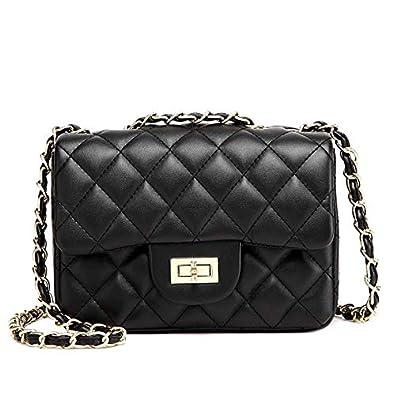 33e25833 Small Gold Chain Quilted Shoulder Bag Mini Cross Body Women Handbag Clutch  Classic Evening Bag (20 * 15 * 7cm), by TOYU S Lady