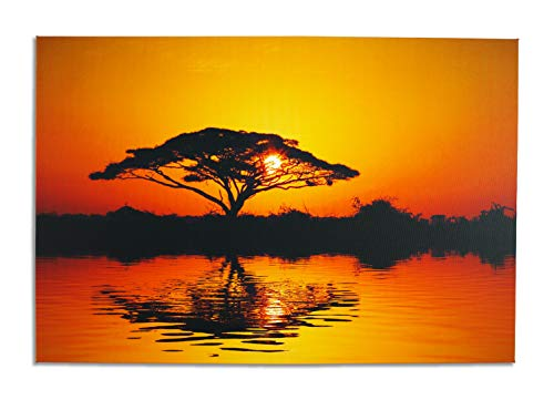 (QIANQUHUI Wall Art, Canvas Prints Pictrure for Home Decorations Inch Picture Frame 24X36inch (Acacia Tree at Sunrise, 24X36) ...)