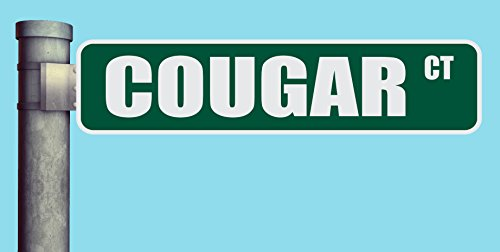 "COUGAR CT STREET SIGN COURT HEAVY DUTY ALUMINUM ROAD SIGN 17"" x 4"""