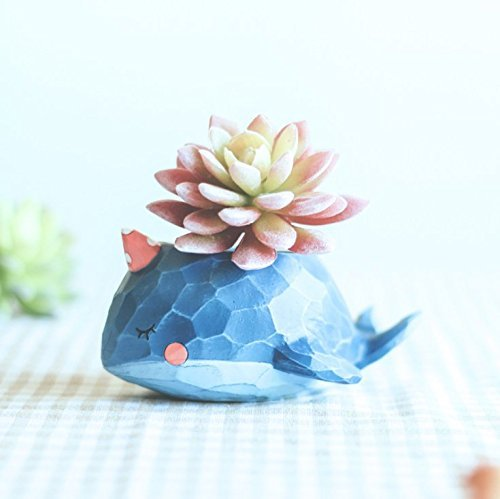 Wish you have a nice day Blue Whale resin Succulent Planter Pots for Office House Balcony Landscape Creative Decorative Flower Pots ()