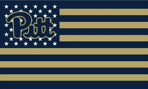 ReddingtonFlags NCAA Pittsburgh Panthers Stars and Stripes Flag ()