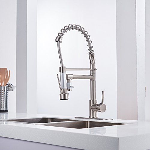 Eyekepper Brushed Nickel Kitchen Sink Faucet Pull Out Down