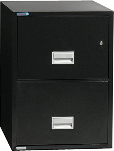 Phoenix Vertical 25 inch 2-Drawer Legal Fireproof File Cabinet with Water Seal - Black