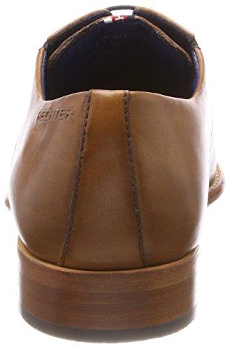 Hechter 6300 811433031100 Daniel Cordones de Zapatos Derby para Cognac Hombre Marrón d6vpnv