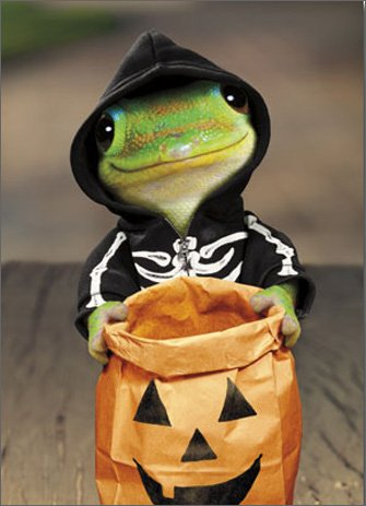 Gecko Skeleton Funny Halloween Card Photo #1