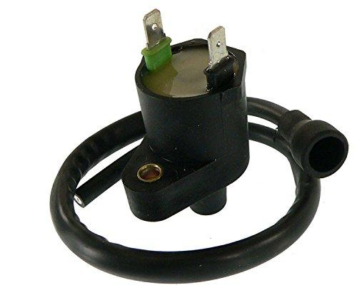 DB Electrical IHA0003 New Ignition Coil for Honda Trx250 Trx 250 Atv 97 98 99 00 01 1997 1998 1999 2000 2001 30510-HM8-000 463724