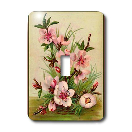 3dRose lsp_7434_1 Pink Floral Single Toggle Switch Multicolor - Floral Single Toggle
