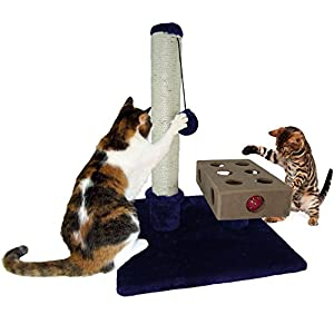 tiger tough scratching posts cat furniture or cat hammock scratcher for cats and kittens amazon     furhaven pet tiger tough small busy box  u0026 scratch      rh   amazon