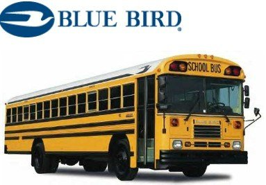 Image result for blue bird bus