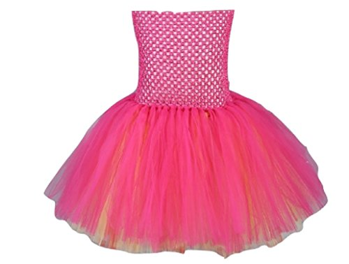 Pink Blossoms Girl Costume Tutu Dress from Chunks of Charm (7, Tutu Dress) -