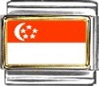Art Italian Charm - Singapore Photo Flag Italian Charm Bracelet Jewelry Link