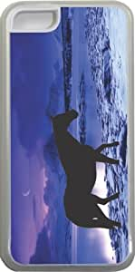 Rikki KnightTM Horse Silhouette on Wintry Blue Design Design iPhone 5c Case Cover (Clear Rubber with bumper protection) for Apple iPhone 5c