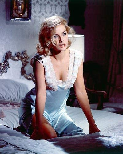 Virna Lisi Busty Sexy How To Murder Your Wife 16x20 Poster At