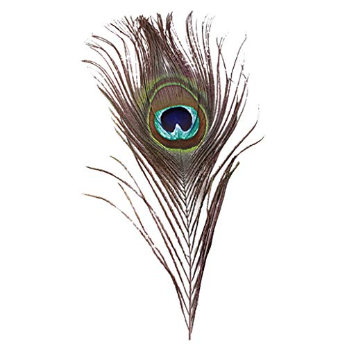 UMFun Lots 10PCS Natural Real Peacock Tail Eye Feathers DIY Crafts23-30cm/10-12Inches Army Green -
