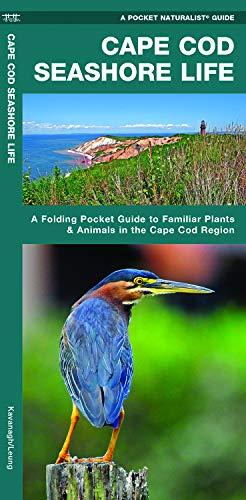 Cape Cod Seashore Life: A Folding Pocket Guide to Familiar Plants & Animals in the Cape Cod Region (Wildlife and Nature Identification)