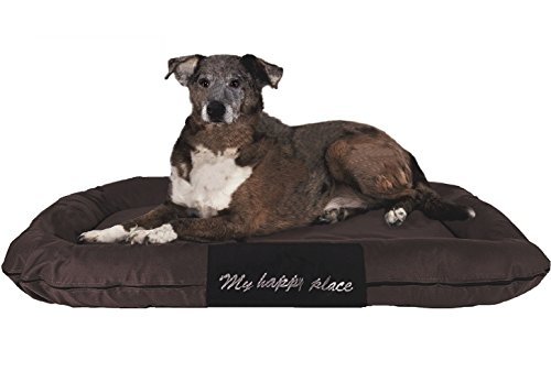thopedic Solid Memory Foam Pet Bed Pad with External Strong Tough Oxford Waterproof Cover Case for Small to Extra Large dog (54x37 inches, Brown) ()