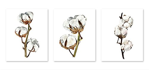 Floral wall art #A108 - Set of 3 (8x10) art prints.Watercolor cotton flower painting. Floral art. Cotton branch posters. Floral art print.Cotton Flowers - Art Cotton