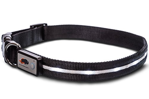 Pictures of Blazin' Safety LED Dog Collar – USB Black XSmall 5