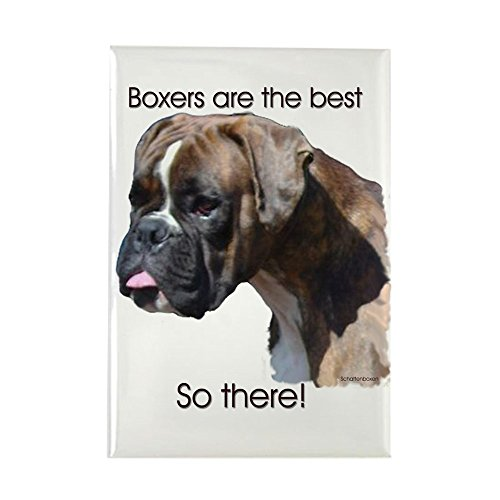 """CafePress Boxers are the Best Brindle u Rectangle Magnet Rectangle Magnet, 2""""x3"""" Refrigerator Magnet"""
